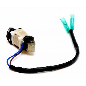 Магнето для мотора Hidea HDF 9,9HS (4 такта)