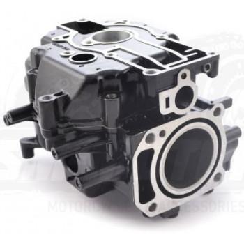 Блок цилиндра с картерной крышкой, лодочный мотор F3.6/4/5 (FRF4-01.06.01.00) CN