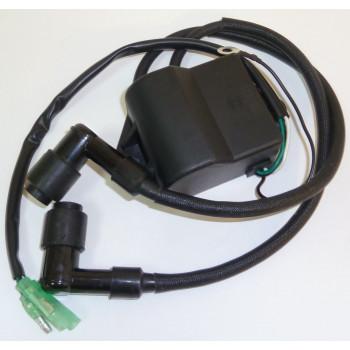 Блок управления зажиганием, лодочный мотор 6.8/8/9.8 л.с. (9.8F-01.03.01.00) CN